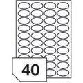 Obrázok pre výrobcu RAYFILM Štítky 45x25 (oval) univerzálne biele *R01004525A